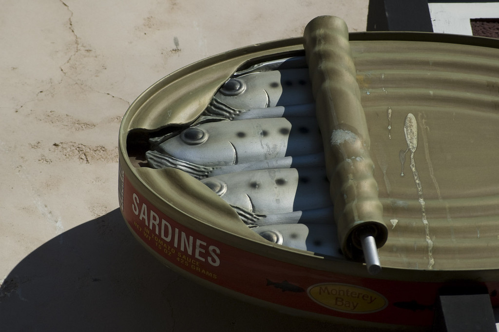 Sardines at Cannery Row in Monterey. Canned, of course